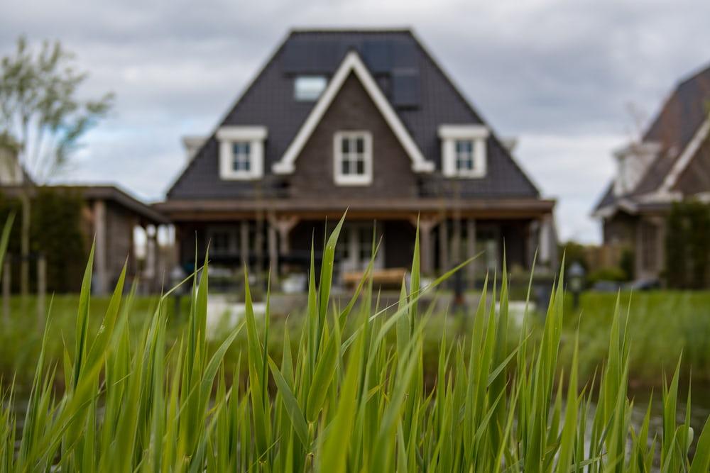 house-thru-grass
